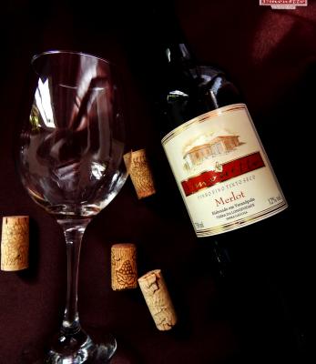 Vinho Tinto Merlot