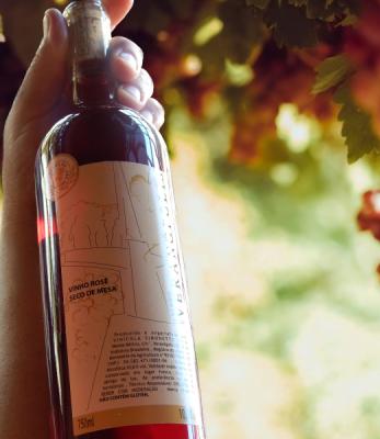 Vinho Rosé Terra da Longevidade